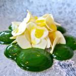 Grilovaný salát s čerstvými lískovými oříšky