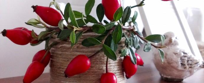 Podzimní dekorace ze šípků